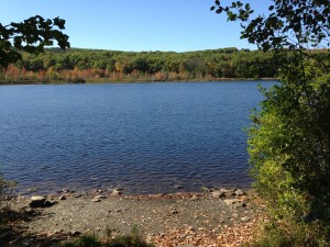 Maces Pond 2