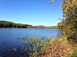 Maces pond october