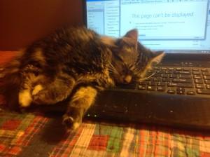 keyboard Maggie