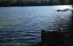 Swim Access at Rocky Pond