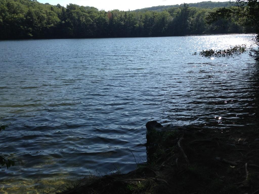 Swim Access at Rocky Pond